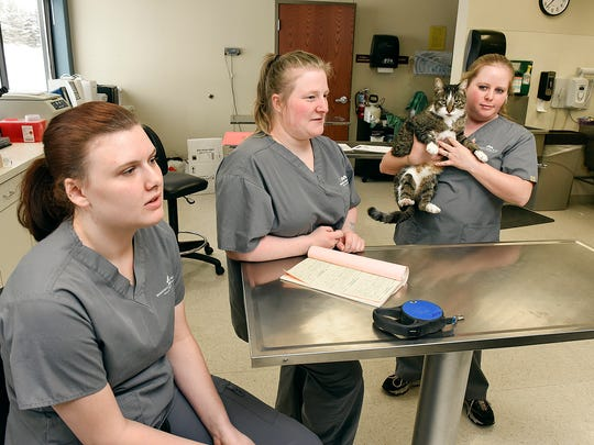 Veterinary technician students Mikaela Krzmarcik, Bree Hinkle and Katie Haug talk Tuesday, Dec. 13, about learning that Minnesota School of Business, a for-profit college, will lose its federal student aid funding at the end of the year.