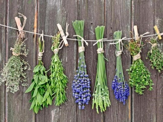 Two classes on cooking with herbs will be offered in October.