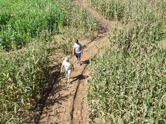 Sandy and Carlan Espenlaub, Hagerstown, Md., take a stroll though the corn maze on Monday, Oct. 3, 2016 at Country Creek Produce Farm, 3746 Etter Road, Chambersburg.