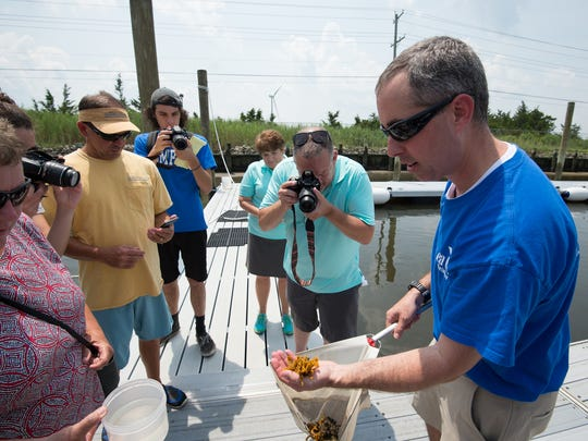 Christopher Petrone, Marine Education Specialist with the University of Delaware, shows some living organisms to members of the media during a Sun Otter Tours stop at the boat dock at the University of Delaware College of Earth, Ocean & Environment in Lewes.  Sun Otters Tours is a new science-based tour company in Rehoboth.