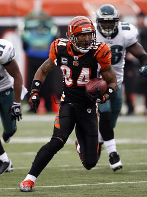 T.J Houshmandzadeh makes a play during his final season with the Bengals in 2008. He will join the team as an intern coach from June 8 through the conclusion of mini-camp June 18.