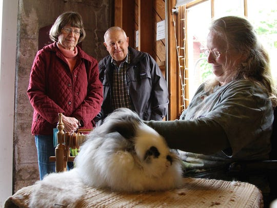 Karen Lamb, of Dallas, spins angora rabbit fur from her rabbit Mollie at the Willamette Heritage Center's Sheep to Shawl on May 13, 2017.