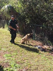 Brevard County Sheriff's Office K-9 Tebow and his partner, Cpl. Jerry Shealy.
