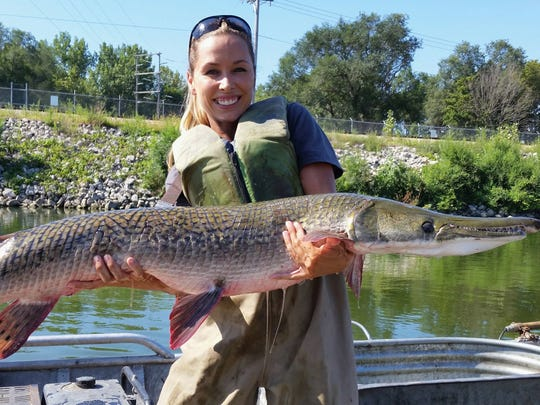 Nerissa McClelland holds an alligator gar collected during a sampling survey at Powerton Lake in Powerton, Ill.