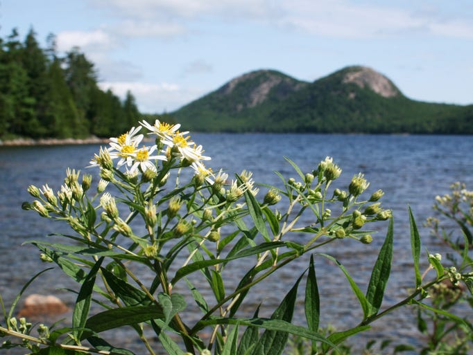 The Park Loop Road passes by popular spots at Maine's Acadia National Park, such as Jordan Pond and Thunder Hole.