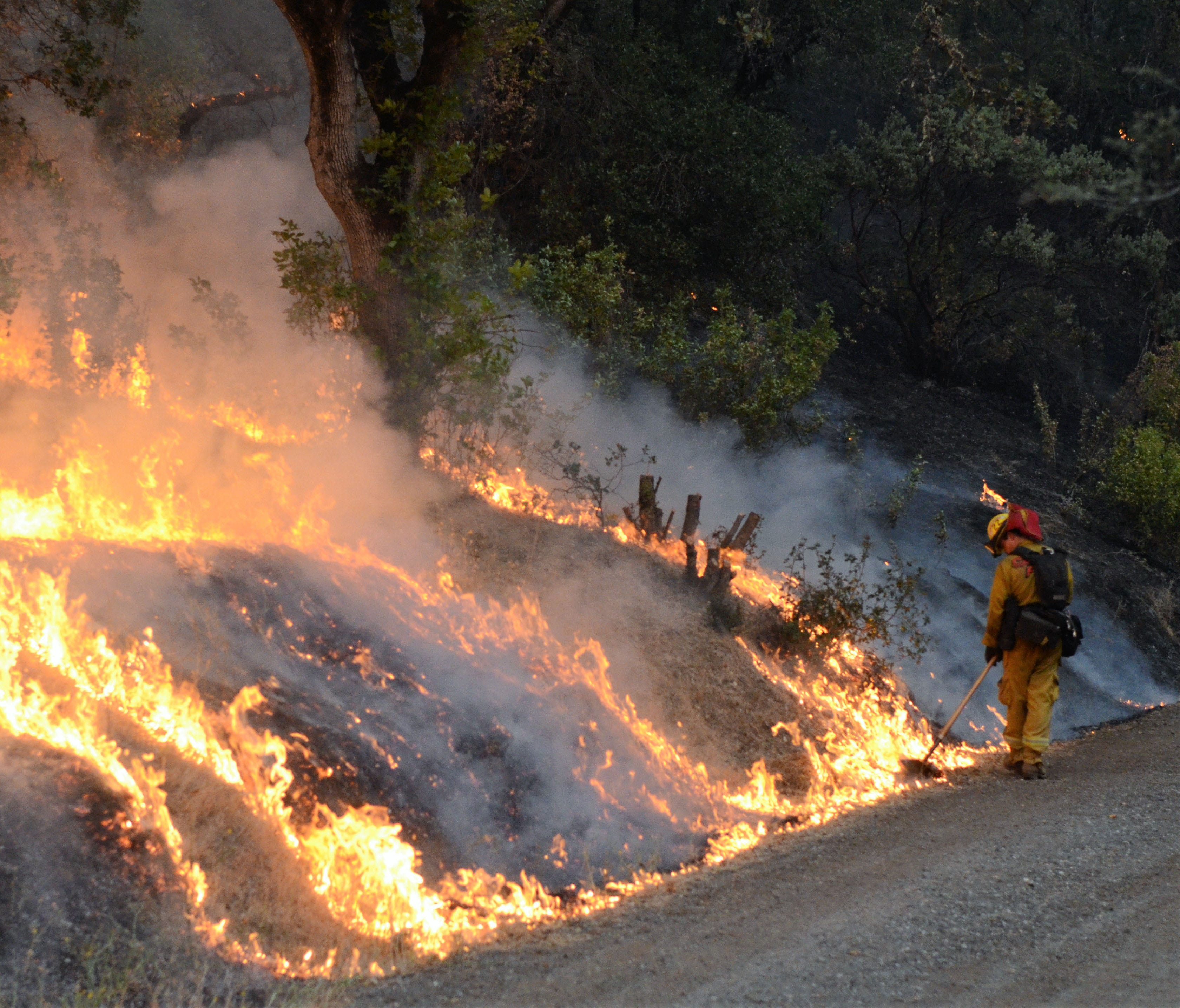 A Cal Fire Butte County Strike Team 9211C firefighter spreads burning brush to burn away excess fuel along Zogg Mine Road near Igo, Calif. The Carr wildfire in Northern California on Sunday has claimed at least five lives, burned hundreds of homes an
