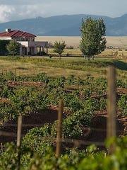 Celebrate HarvestFest at Sonoita Vineyards in the village of Elgin in southern Arizona