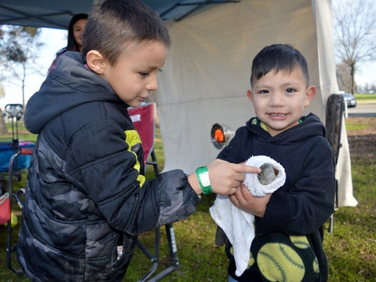 Elijah Valdez, 4, holds one of the fish he caught Saturday at the Winter Trout Fishing Derby at Plaza Park in Visalia.