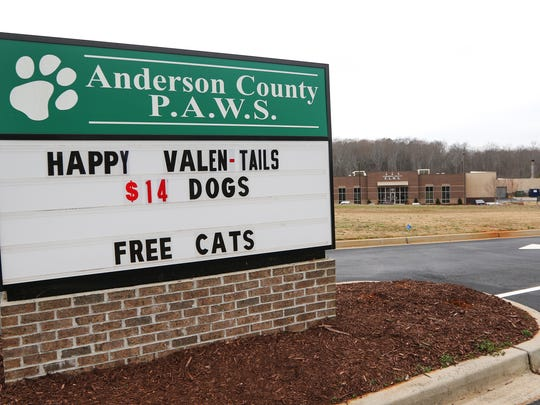 "Anderson County P.A.W.S. in Anderson has 150 dogs and 95 cats available for adoption as part its ""Valentails"" promotion."
