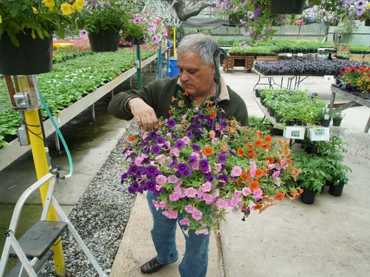 Paul Calistro, executive director of the West End Neighborhood House, shops for flowers at Bright Spot urban farm, managed by youth who have aged out of foster care.