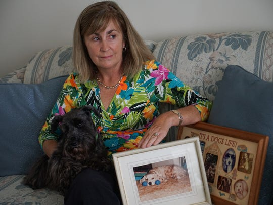 Patti Flinn holds her current dog, 7-year-old Schnauzer Munchkin, with old photographs of her 11-year-old cocker spaniel, Jody, who was buried in the Stanton SPCA cemetery.