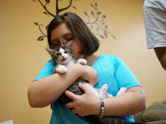 12 year-old Amber holds a kitten while stopping by the new Tree Tops Kitty Cafe with her mother Kat Eller on Tuesday.