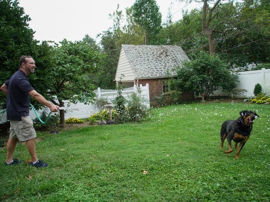 Owner of Junior's pet food Dan Lavin plays with his