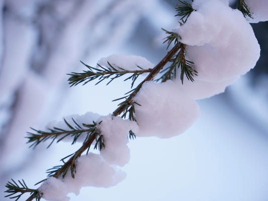 WIL SNOW