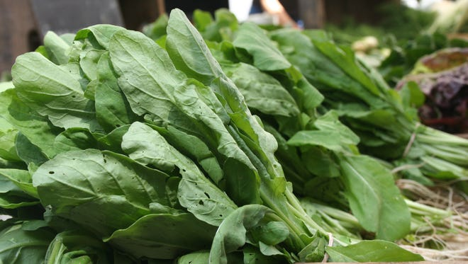 Greens from Gaining Ground Farm.