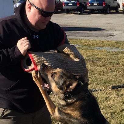 Richmond Police Department K-9 Leo waits for a command from his handler, Officer Austin Lipps.