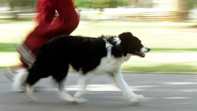 A man and his dog running.