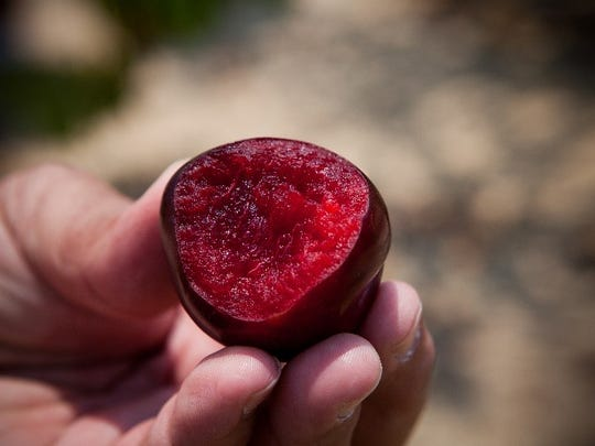 Plum trees are just one of many edible landscaping options.
