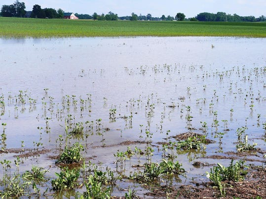 Purdue expert flooding cost indiana 475m in lost crops for Cronotermostato lafayette cds 30