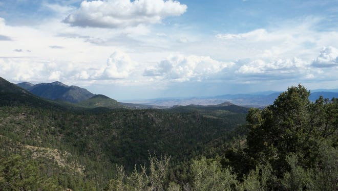 Gila National Forest.