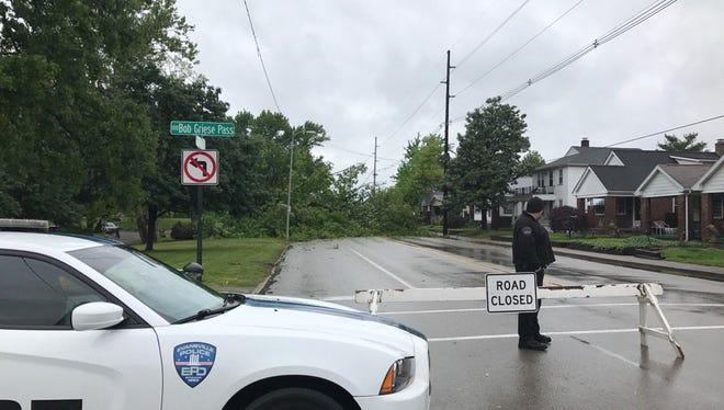A large tree from Garvin Park fell over Friday morning, blocking Heidelbach Avenue.