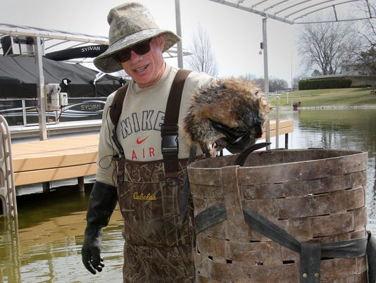 Destructive muskrats trapped from Okauchee Lake