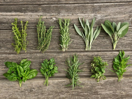 Herbs in the wooden board