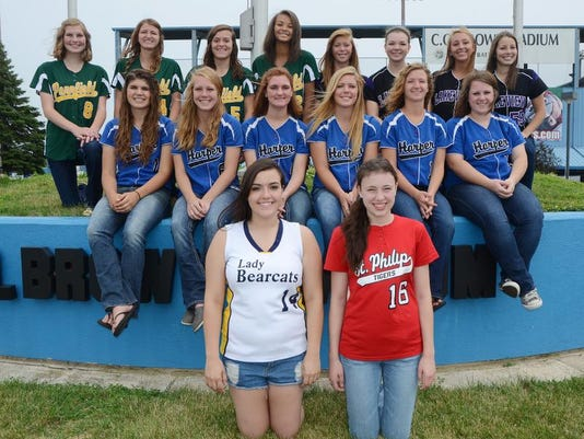 all city softball 2014.jpg