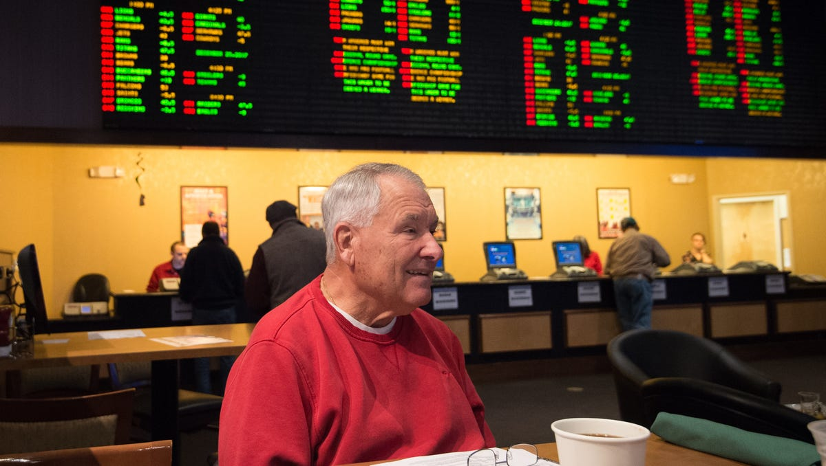 Minto sports betting vaclav sports betting