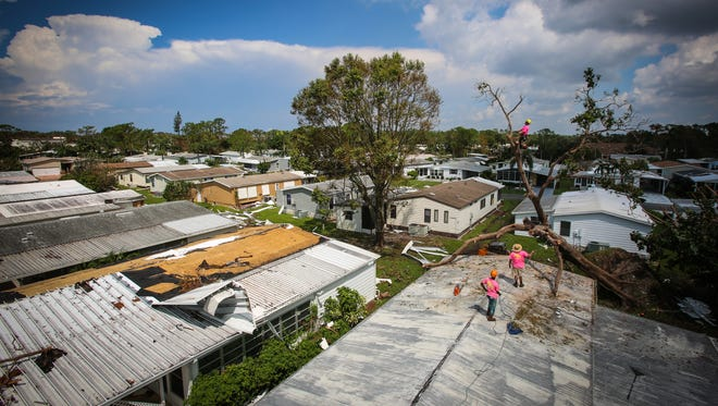 """Tarrelle Johnson, 27, left, Josh Walker, 25, center, and Nick Dedominicis, 24, on the tree, work to remove a tree that fell on Donna Gomes' home in North Naples Thursday, Sept. 14, 2017. The trio work for Elite Treehouse, a company based in Canton, Georgia, which was contracted to help clean up the Landmark Naples neighborhood. """"We realized how much destruction was down here and wanted to help out,"""" Walker said."""