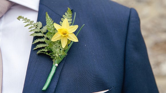Daffodil and Fern Boutonniere