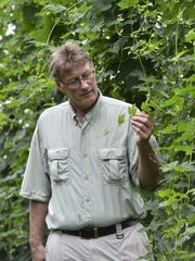 Russ Fulwiler of Fully Shire Hops 'N Rocks inspects