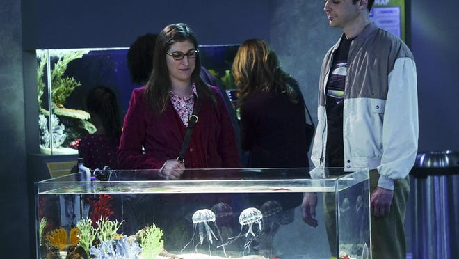 """Mayim Bialik and Jim Parsons appear in a scene from """"The Big Bang Theory."""""""