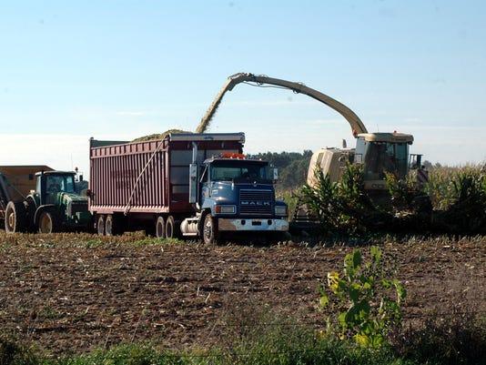 Farmer-1-D012--2016-09-22-IMG-Corn-silage-harvest-1-1-64FPL5LD-L886530945-IMG-Corn-silage-harvest-1-1-64FPL5LD.jpg