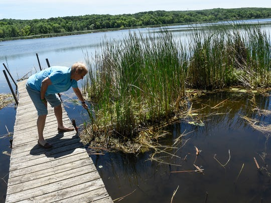 Barb Platten talks about the formation of many floating bogs that cover large areas of Linneman Lake near Avon.