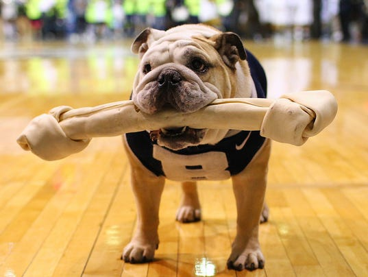 2013-09-03-butler-bulldogs-new