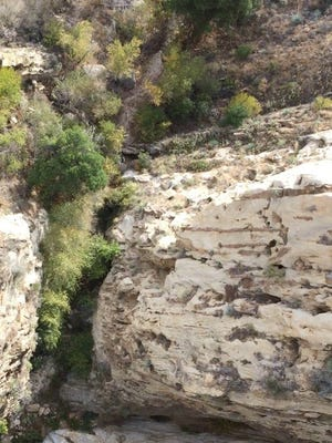 A helicopter crew found a missing mountain biker in this deep canyon along Agua Blanca creek.