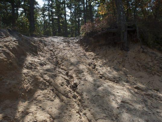 WHARTON FOREST damage