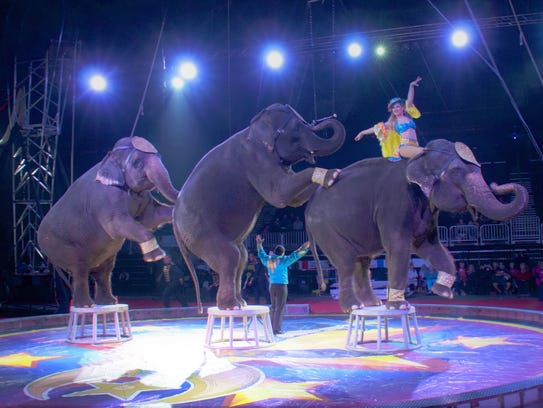 The Shrine Circus will be coming to Sheboygan for one