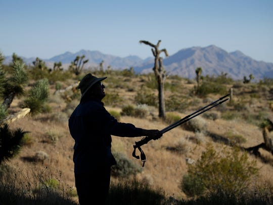 In this May 26, 2017, photo, Eric Wilson, of Oakland, Calif. hikes at the Gold Butte National Monument near Bunkerville, Nev. The monument along the Arizona border in Southern Nevada is among the national monuments under Trump administration review. (AP Photo/John Locher)