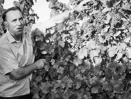 Konstantin Frank in his vineyard.