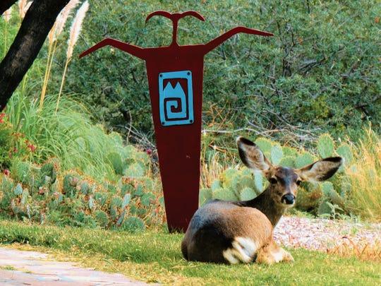 "New Mexico wildlife appreciates Mark Bowen's metal art ""Shaman."""