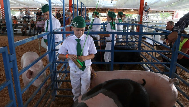 Cottonwood 4-H member Branden Barnes, 10, center, gets ready to show his pig Spider Pig Thursday at the Shasta District Fair.