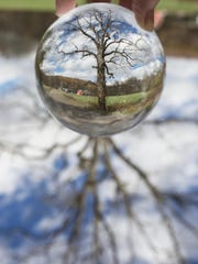 """""""Through the Double Looking Glass: Photographs by Julia"""