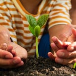 Little hands can help create family victory gardens