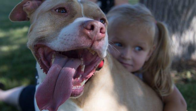 Kaydence Hevner gives her pet pit bull, Karona, a hug in the park Friday.