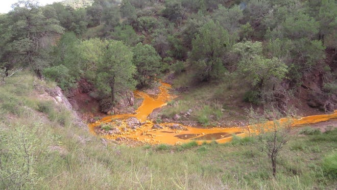 This photo is the overflow from the Lead Queen Mine area. This mine did not receive a violation notice and is on U.S. Forest Service land.