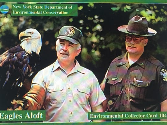 Mike Allen never tired of watching a bald eagle in flight, or one perched on his arm. The famed DEC wildlife technician enjoyed sharing the story of the eagle's amazing comeback in New York and advised people to keep vigilant about a clean environment.