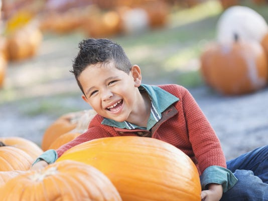 Little Hispanic boy in pumpkin patch