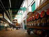 What it's like to go on the Heineken Experience brewery tour